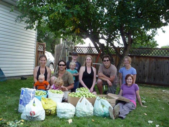 Urban harvest group